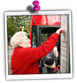 Picture of a older person looking at information at a bus stop